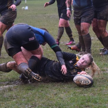 Llandaff North Ladies vs Bargoed Bears 01/03/2015