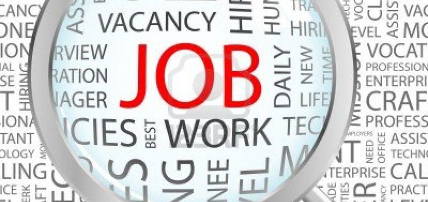 Job Opportunity – Cleaner